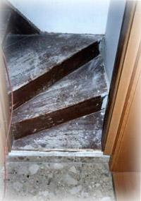 treppensanierung olaf werner ehrenfriedersdorf. Black Bedroom Furniture Sets. Home Design Ideas